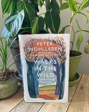 WALKS IN THE WOODS PETER WOHLLEBEN.jpeg