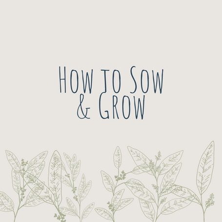 How To Sow & Grow