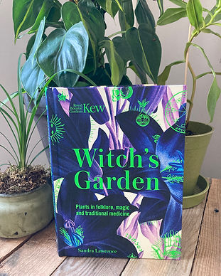Witch's Garden By Sandra Lawrence.jpeg