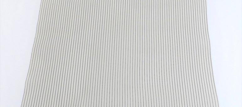 白と黒の縞柄1.jpg