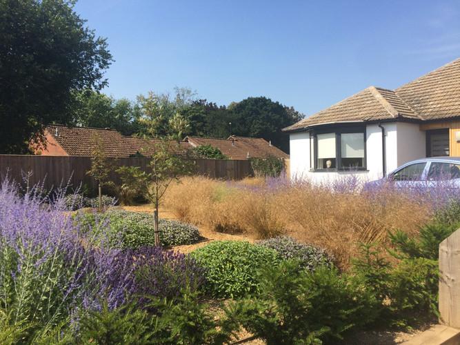 Front Garden Hoveton