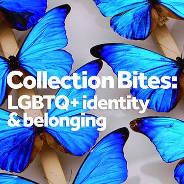 Collection bites feb 21 tile.jpg