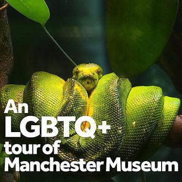 LGBTQ+ tour tile.jpg