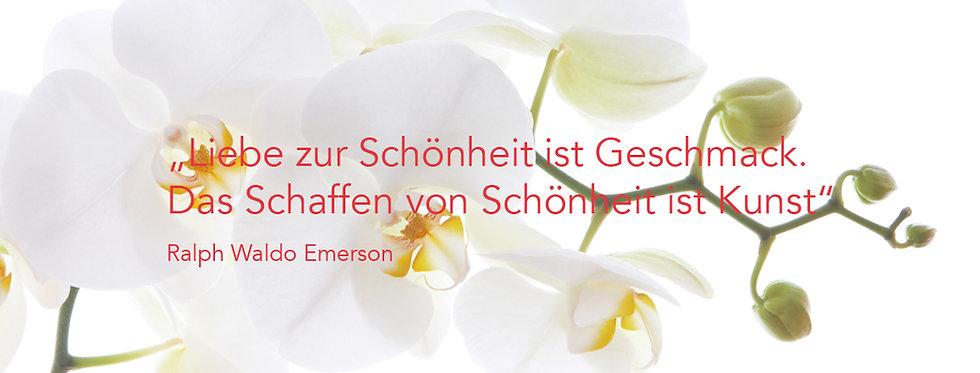 orchidee_zitat.jpg