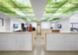 Electronic-Arts-office-Sid-Lee-13-810x57