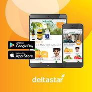 Deltastar Foto1.jpg