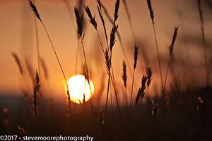 Summers end, Sunset Sun, sun, sun set, orange