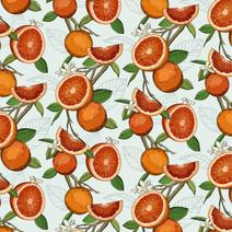 Blood Orange Pattern
