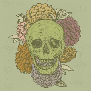 Skull & Floral Illustration