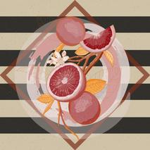 Grapefruit Illustration