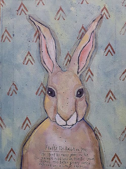 Fluffy the Family Rabbit
