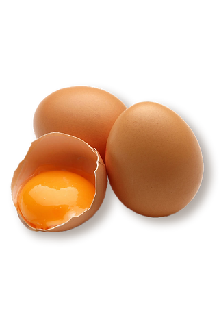 EGG-01.png