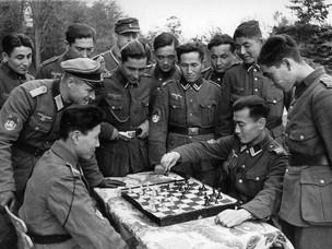За что Сталин депортировал калмыков в разгар Великой Отечественной войны?
