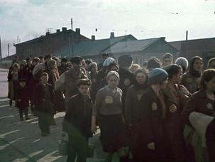 Проводник из ада: воспоминания мальчика, выжившего в Минском гетто