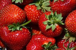 strawberrry 2021.jpg