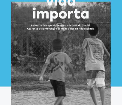 Comitê divulga relatório Cada Vida Importa 2018