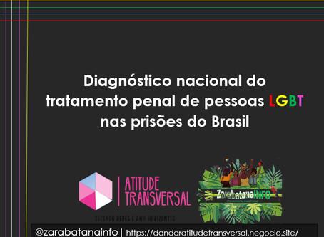 Diagnóstico Nacional do Tratamento Penal de Pessoas LGBT nas prisões do Brasil