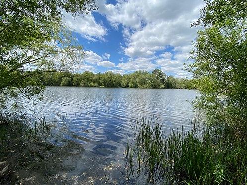 lake 14.jpg