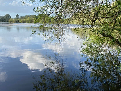 lake 19.jpg