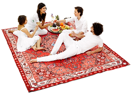 picnic-garden-party.png