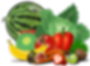 fruits-155616_1280.png