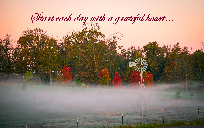 Windmill Grateful Life (1 of 1)