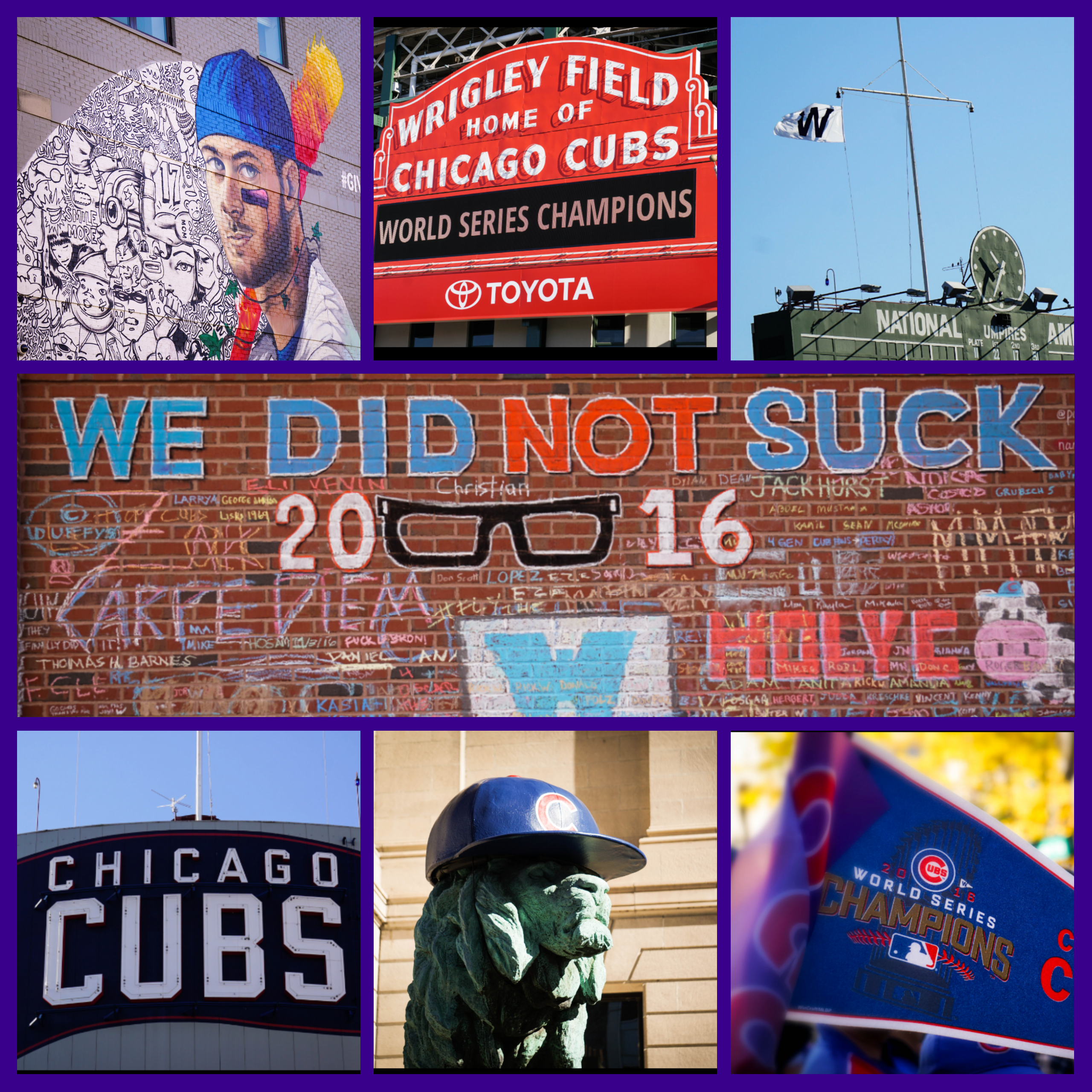 Cubs_Updated_Collage.jpg