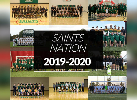 St. Clair Athletics year in review