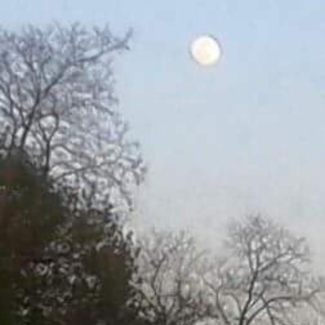 La abuela luna blanca y hermosa  captada por el lente de claudia