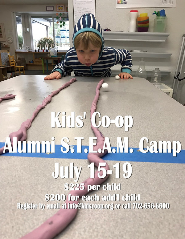 STEAM Camp 2019 Image.jpg