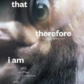 The Animal That Therefore I Am - A Review