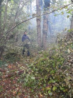Abri survie en forêt