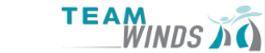 logo team winds.png