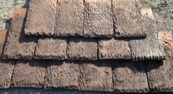 Shingle bark medium brown