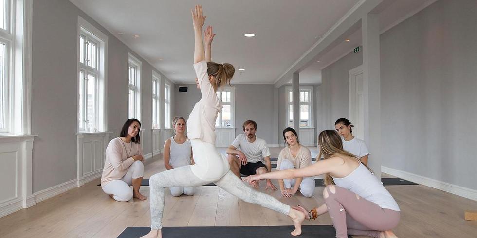 200 Hour Vinyasa + Ayurveda Yoga Teacher Training