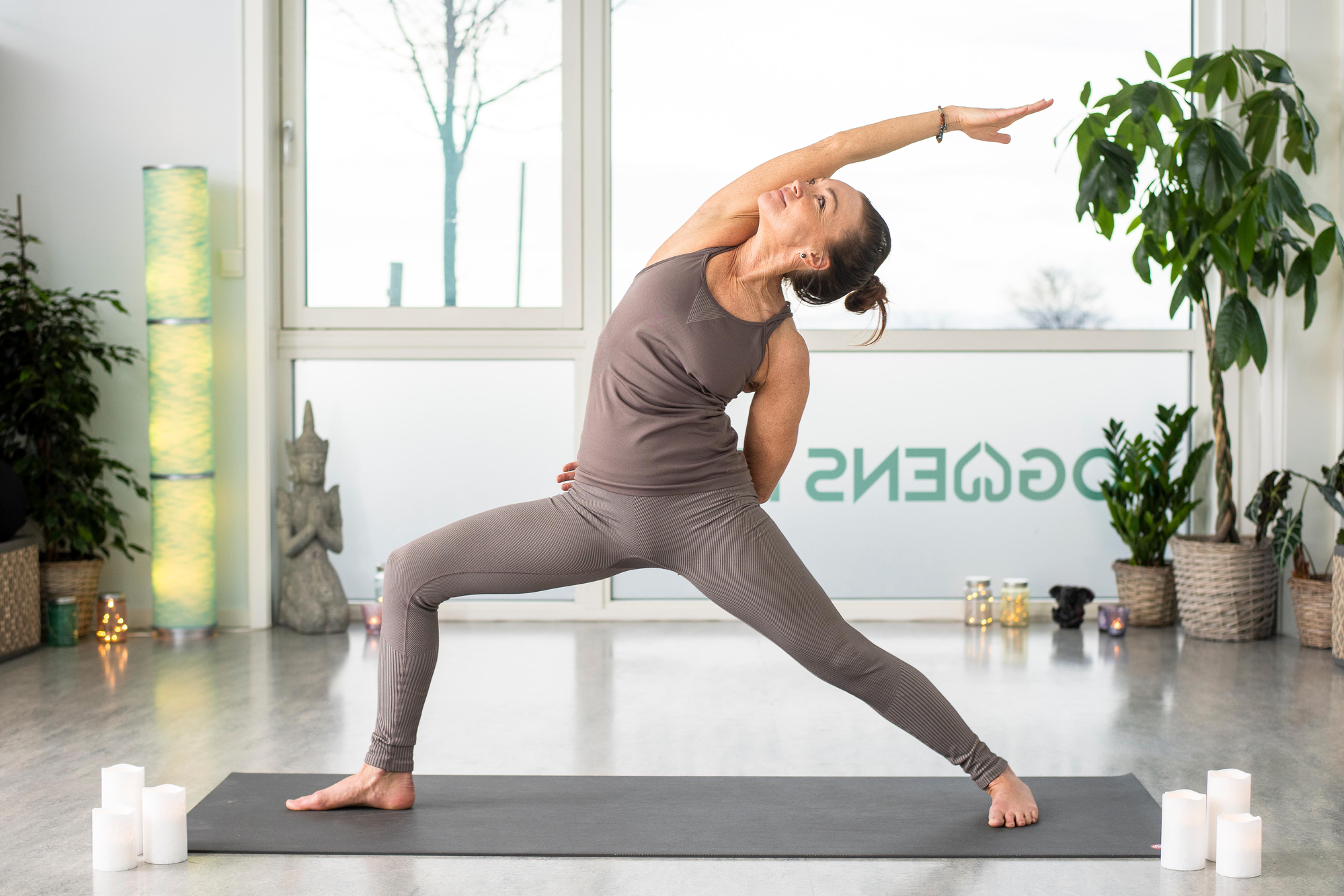Vinyasa yogaflyt