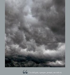 """""""Le gris : une couleur-caméléon"""""""