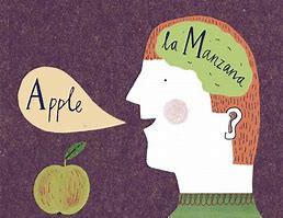 Bilingualism is a bonus!