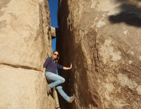 Rock climber Joshua Tree National Park