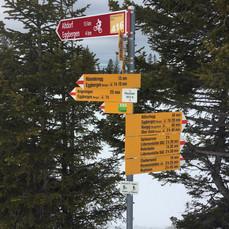 Schneeschuhwanderung bei Vollmond