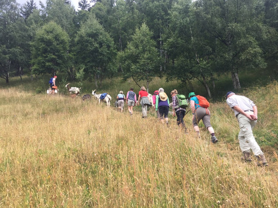 Yoga & Wandern im Val Medel