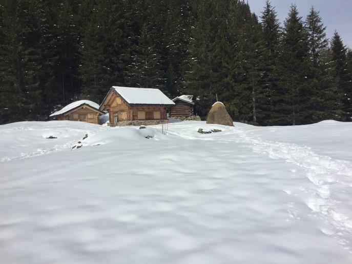 Schneeschuhwanderung Arnisee