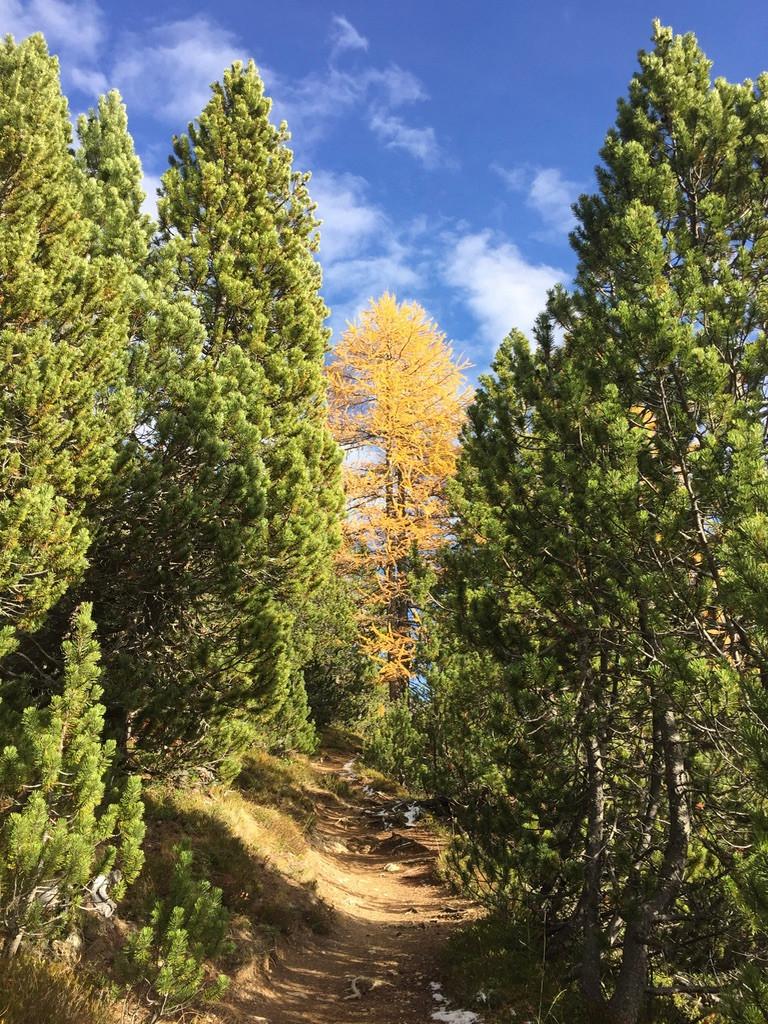 Drei Wanderungen im Nationalpark