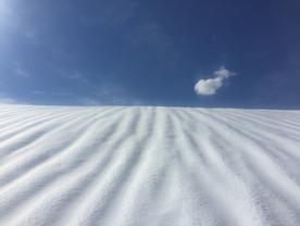 Schneeschuhwanderung Stoos