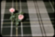 Small vase of two pink roses on a black, grey, and yellow plaid cloth.