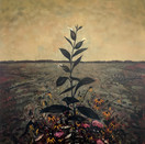 Rafael Francisco Salas, 2020. In Flowered Fields (The Autumn) #1, 2020. Oil on canvas, 40 x 32 inches