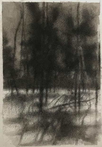 Moonlight in Winter Forest.jpg