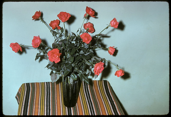 Vase of roses on a small table with a blue backgroun