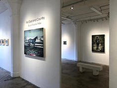 Intallation view, 2019, For God and Country, solo exhibition.