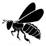 Worthing Beekeepers Associaton